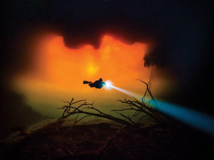 Scuba Diving 11 magazine concurso fotografía submaina mar vidasalvaje