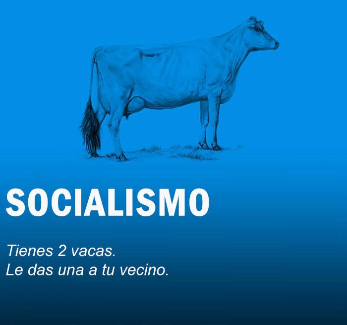 vacas economia Cultura Inquieta2