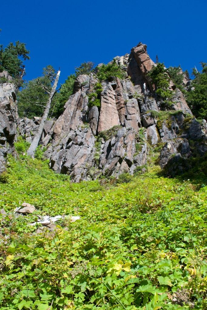 Tolmie Peak, Washington