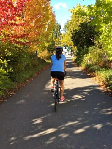 Fall Burke-Gilman Trail