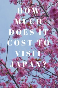 How Much Does it Cost to Visit Japan?