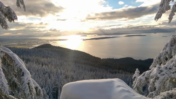 Oyster Dome Winter