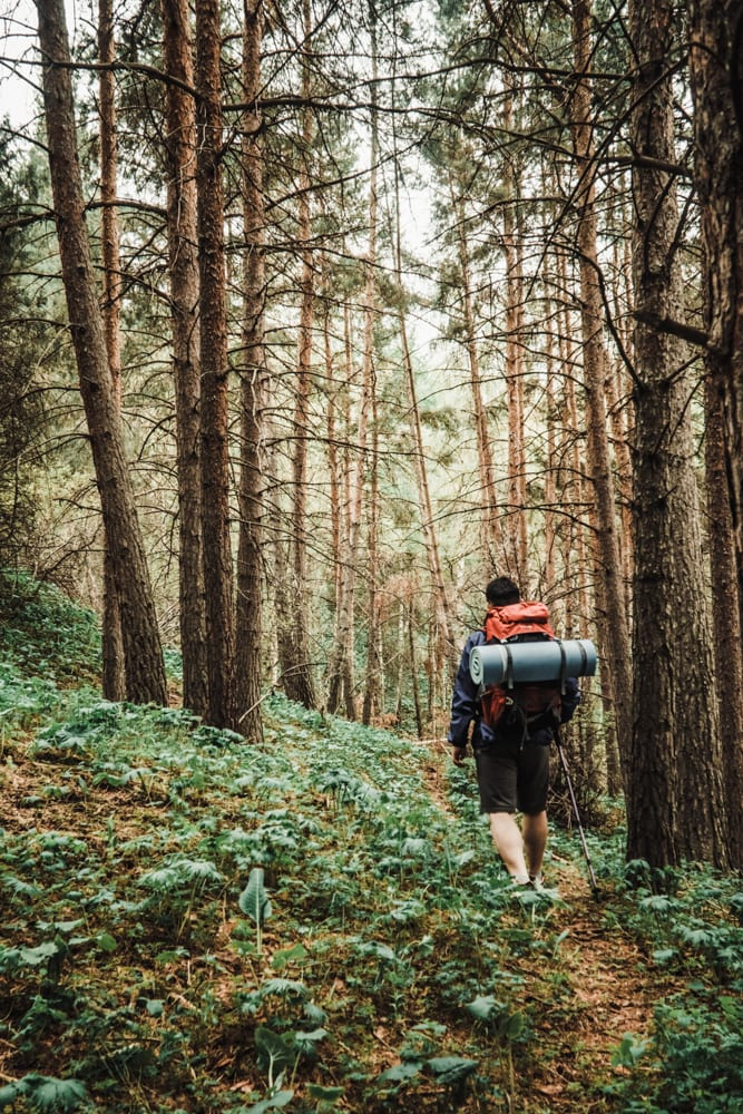 CulturallyOurs Hiking 101 A Beginners Guide To Hiking