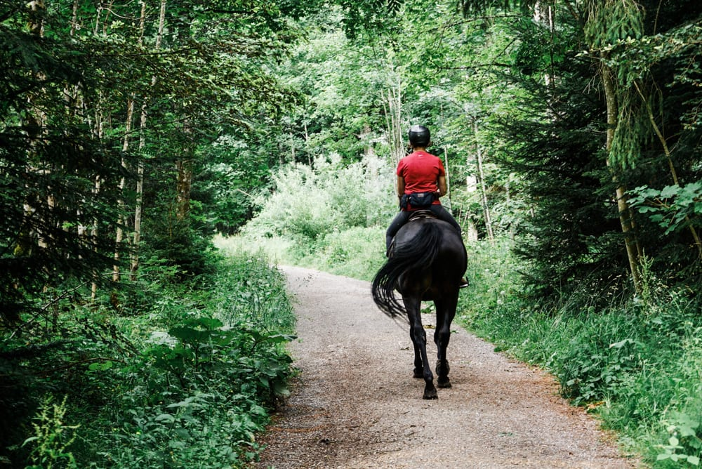 CulturallyOurs Hiking Trail Etiquette Guidelines With Horses