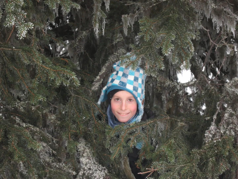 Jake in a tree