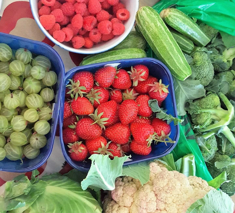 Garsons Farm, Esher Surrey. Strawberries