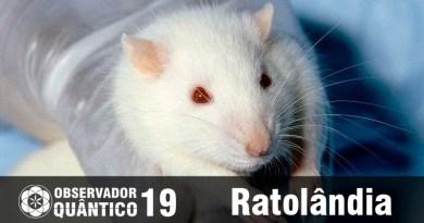 Observador Quântico 19 ratolandia rat park