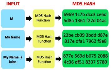 Aplicação da função Hash em texto.