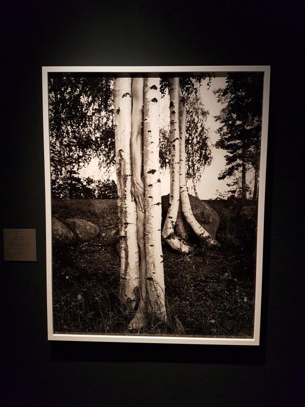 Arno Rafael Minkkinen, Väsäänsaari, Finland, 1998. Foto fra utstillingen; Siri Wolland