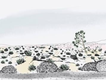 Enara paisaje 3