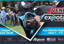 Photo of CRONOGRAMA DE ACTIVIDADES Y SHOW DE EXPOTAN  2019