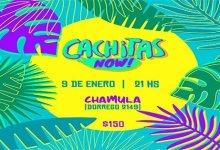 Photo of Cachitas Now