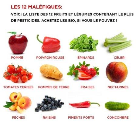 Fruits et légumes contenant le plus de