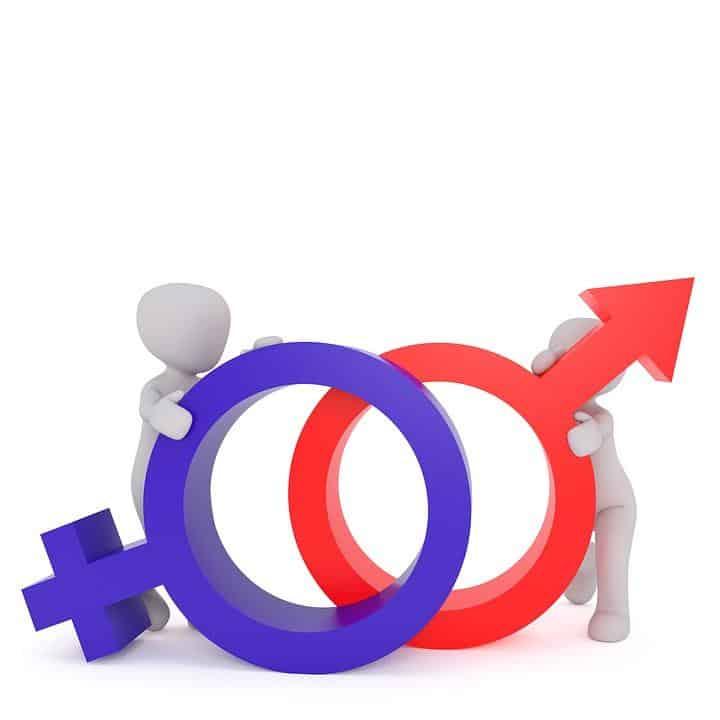 ET SI ON PARLAIT FRANÇAIS ? - n°4 - féminin ou masculin ?