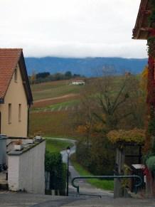 Countryside, Geneva