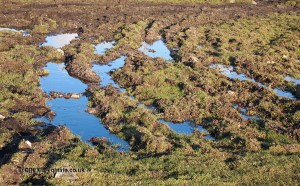 Reflection on moor in Cornwall