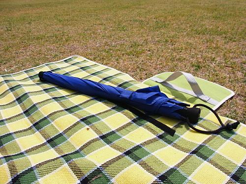 R1153731 EuroSCHIRM(ユーロシルム)の傘