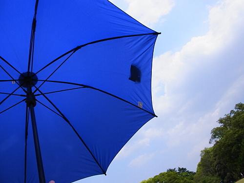 ユーロシルムの傘