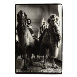 Günther Uecker und Klaus Rinke in den Gängen der Kunstakademie auf Kamelen, 1978