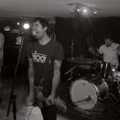 greys live