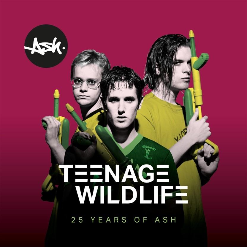 Teenage Wildlife: 25 Years Of Ash cover artwork