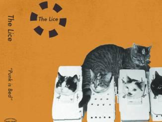 The Lice Punk Us Bed album cover artwork