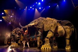 REVIEW: Circus 1903 – the greatest show is in town