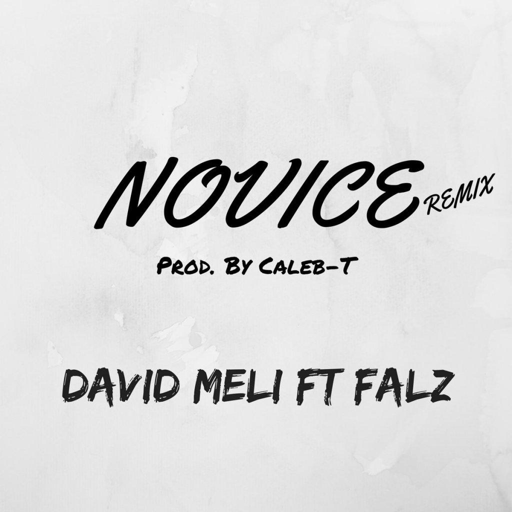 Novice Remix