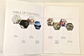 Alyssa Julian's Wirewove - contents page shows off gorgeous layout