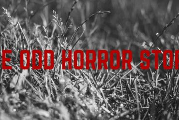 The Odd Horror Story
