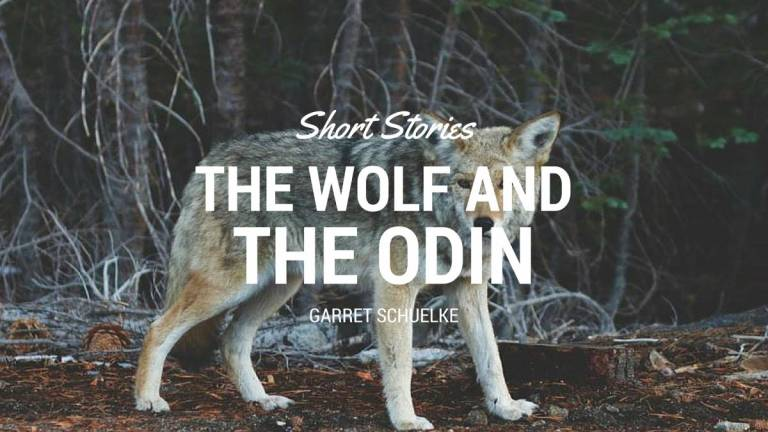 The Wolf and The Odin