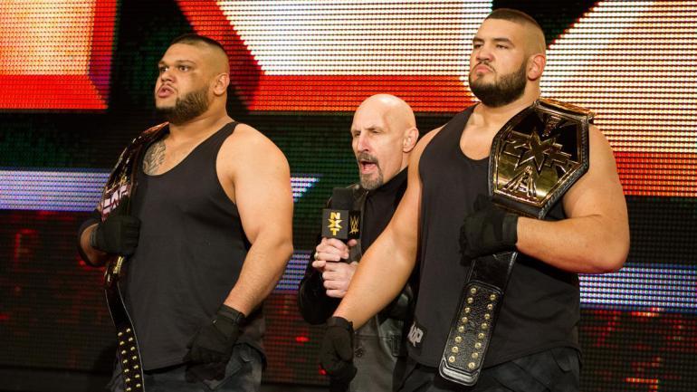 Authors of Pain WWE