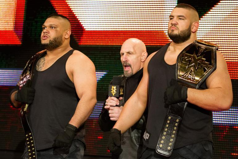 Authors of Pain WWE