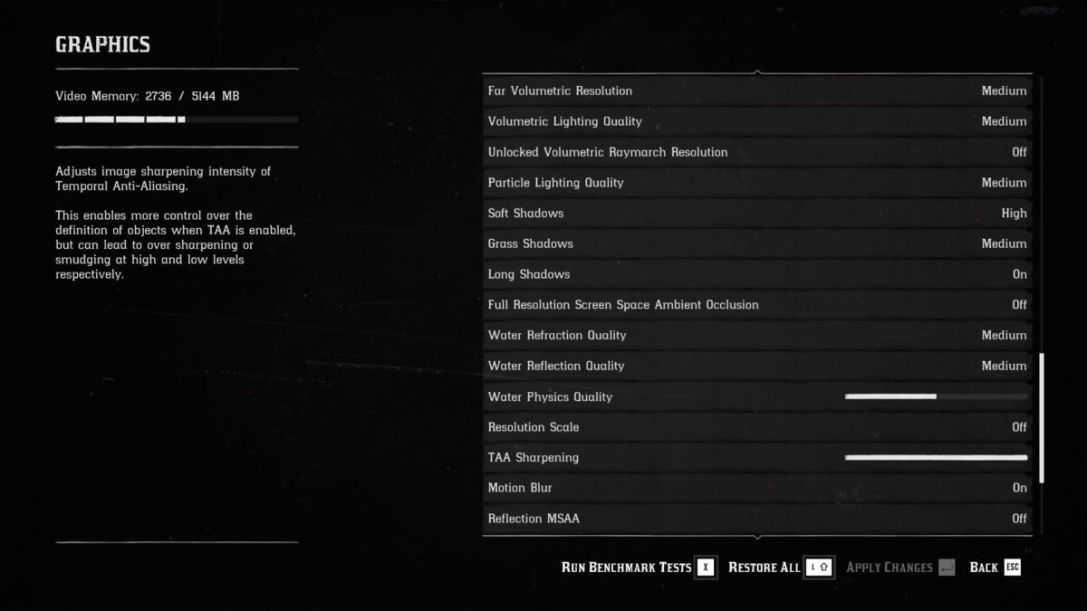 Red Dead Redemption 2 PC advanced settings