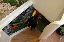 Museo dei Tulipani_www.culturefor.com