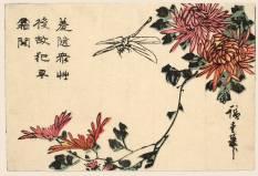 """Utagawa Hiroshige """"Libellula e crisantemi"""" (1837-1838 circa) Silografia policroma, 11 x 16,4 cm - Honolulu Museum of Art"""