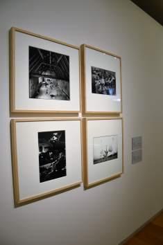 New York New York - Museo del Novecento (4)