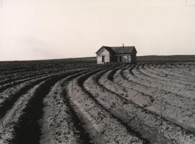 Dorothea Lange - Tractored Out, Childress County, Texas