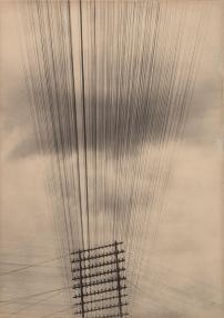 Tina Modotti - Telegraph Wires