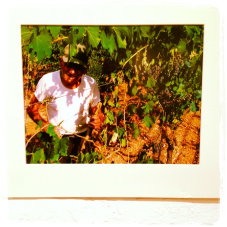 "Randy Gener | ""Ode to a farmer in Umbria"" (2008) archival print 