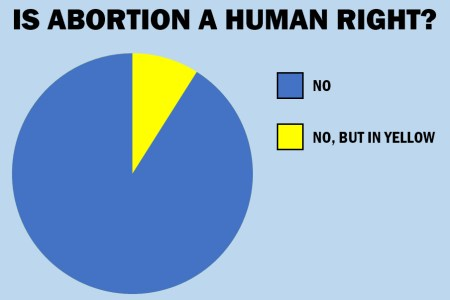 Abortion Human Rights