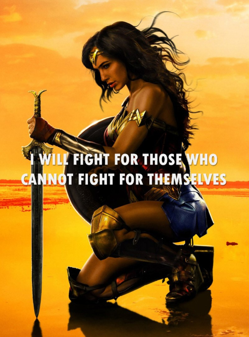 Wonder Woman Fight