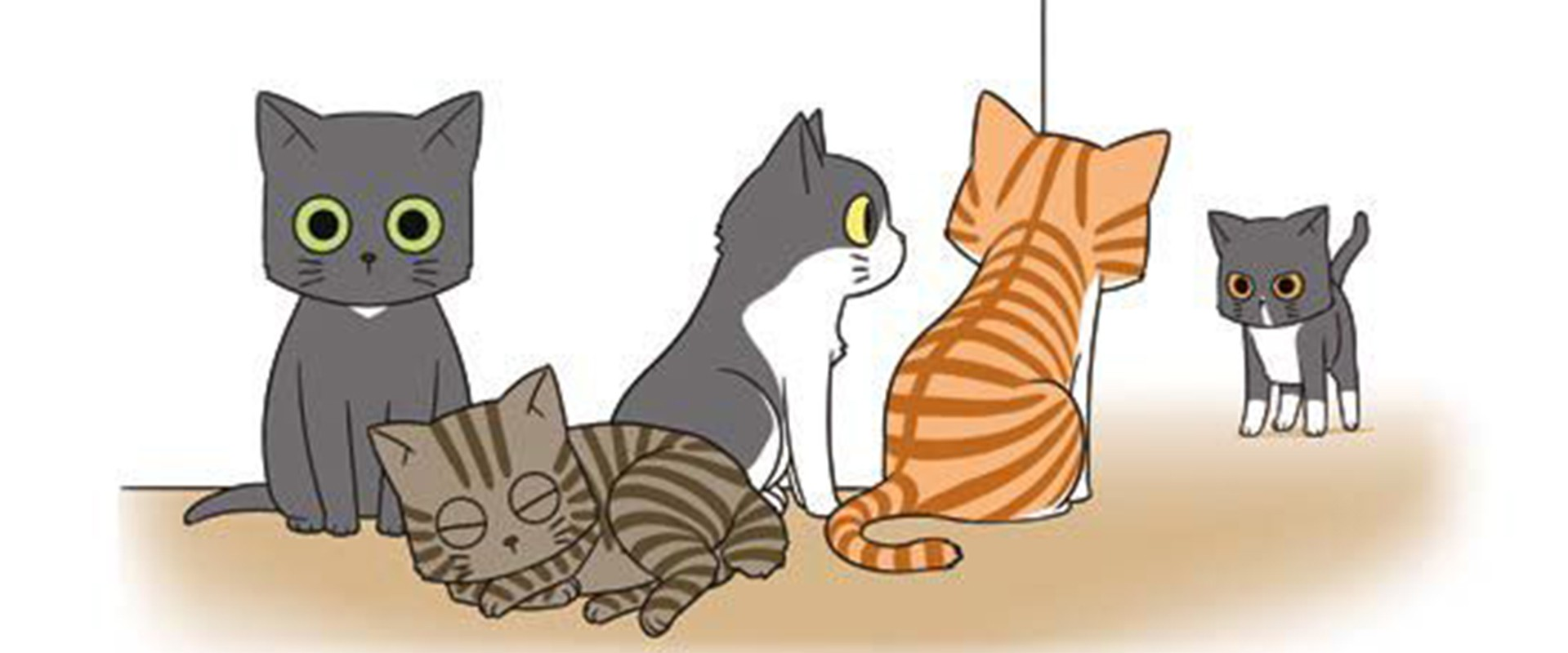 Sa Majesté le chat