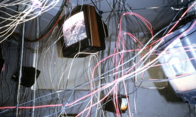 Carolee Schneemann's 'More Wrong Things' at the Hales Gallery