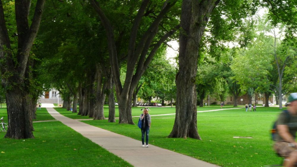 Image is of the Colorado State University oval. Located at the University the subject, Kira Gregory, attends.