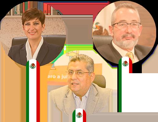 El impacto de los Organismos Autónomos en la vida democrática del país - Cumbre Internacional Legislativa Guanajuato 21