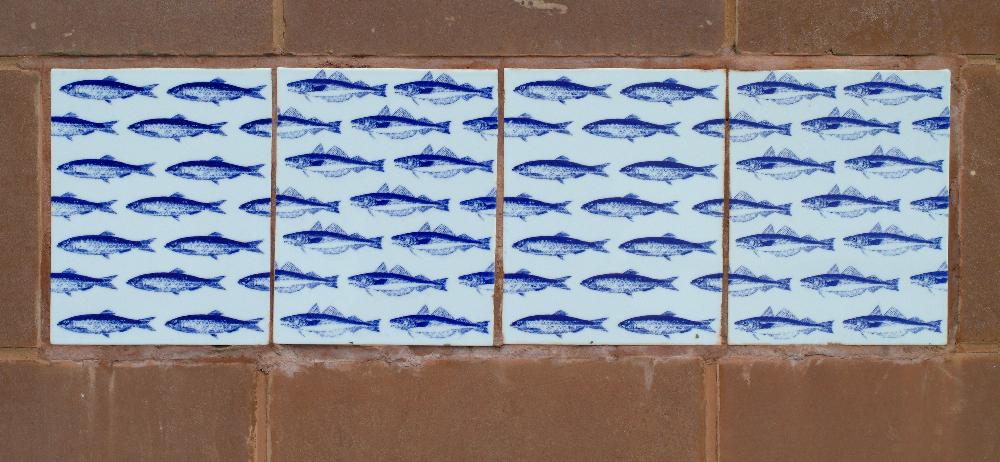 3.fish