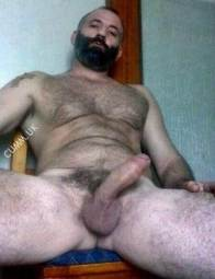 big bare bear beauty boners bullocks buttocks HUNG STUDS ADORABEAR