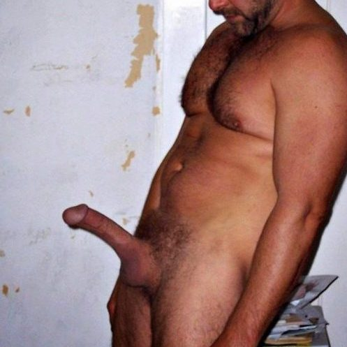 big-beefy-bear-bonner