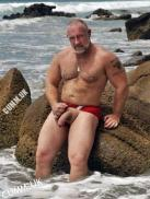 big cock beach bear